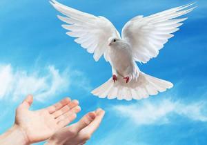 el-espiritu-santo